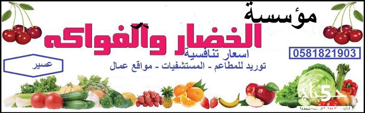 شركة الخضار والفاكهة  متخصصين في توريد الخضروات والفواكه بالجملة بأفضل الأسعار