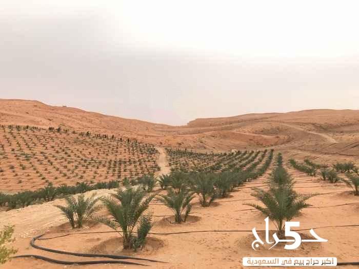 مزرعة للبيع فى طريق مكة المكرمة
