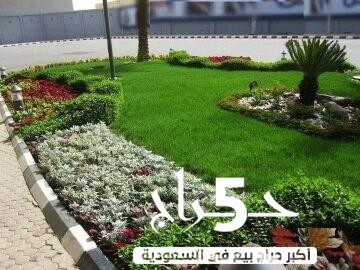 تنسيق حدائق وعشب صناعي