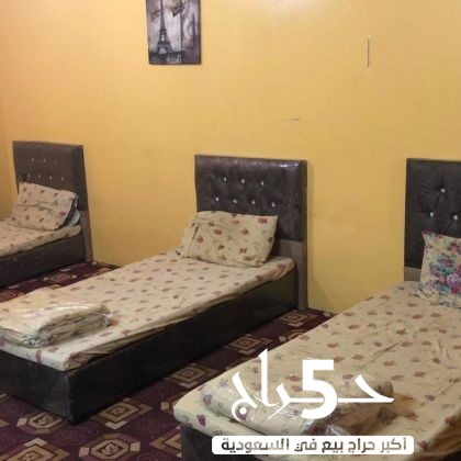 استراحات وغرف مفروشه للعزاب الرياض