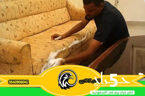 افضل شركة تنظيف شقق بالمدينة المنورة/شركة طارد الحمام بالمدينة المنورة-طرد الحمام بطرق أمنة-مؤسسة النسر الذهبي0540906041